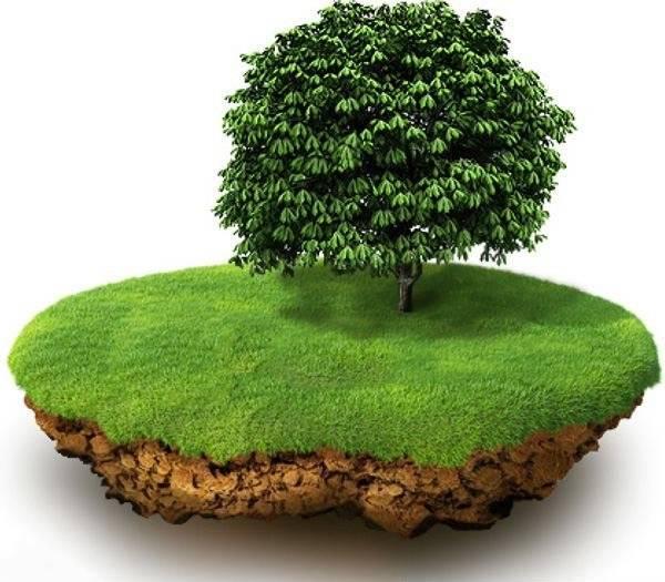 Налог на землю для физических лиц