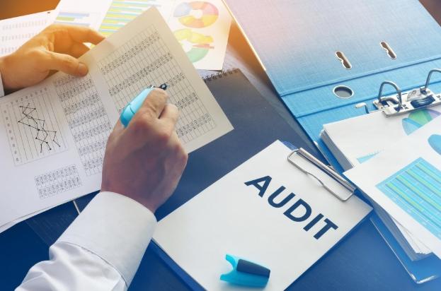 Проведение аудита бухгалтерской отчетности
