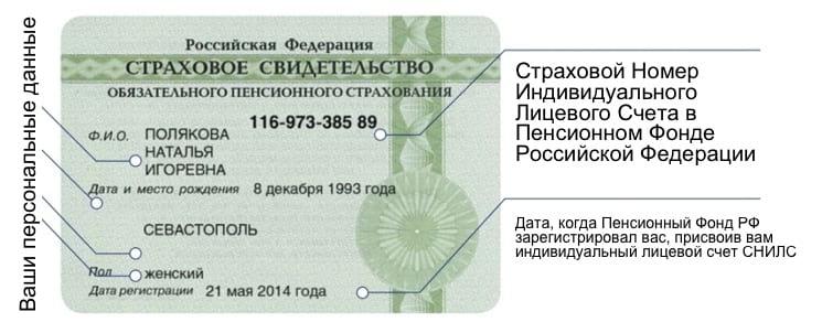 Можно ли по паспорту узнать номер снилс